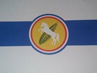 bandera de palmitas