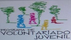 programa de voluntariado juvenil - palmitas